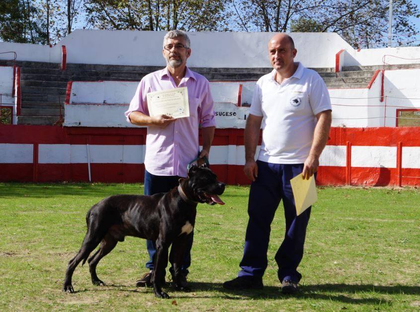 Hierro de Brega, Pantero de Oli (propiedad del Corrican) x Nube de Brega. Junto a él,  su propietario Don José Angel Romero.